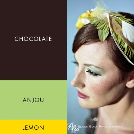 Fabulous Fall Wedding Color Palette – Chocolate, Anjou Pear and Lemon