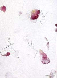 rose petal wedding paper