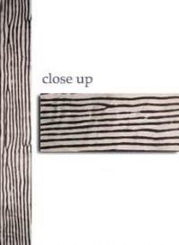 zebra sash